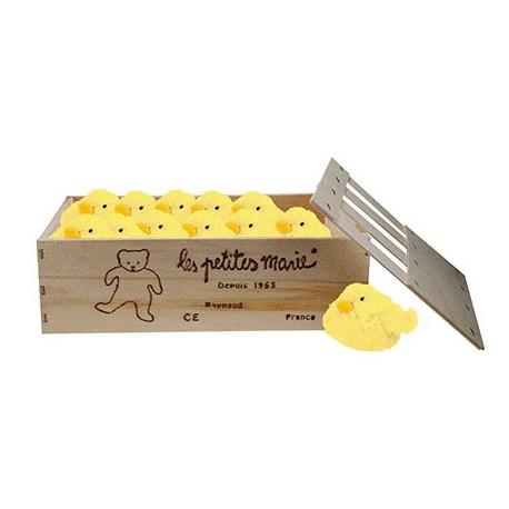 cagette de 12 poussins POLO jaune 10 cm
