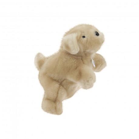 Marionnette Labrador
